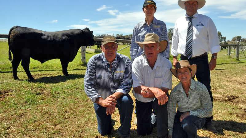 2016 Top Price Bull at Granite Ridge Angus Sale